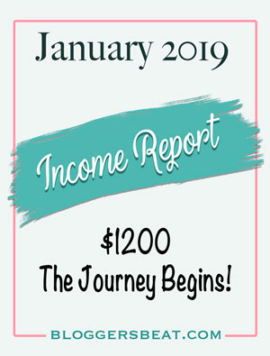 January 2019 Income Report