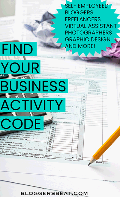 Business activity code pin